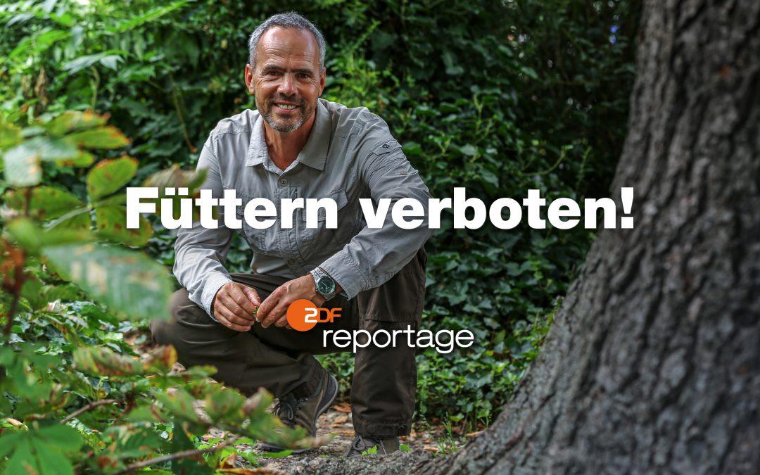 zdf.reportage – Füttern verboten! – Wilde Tiere in der Stadt