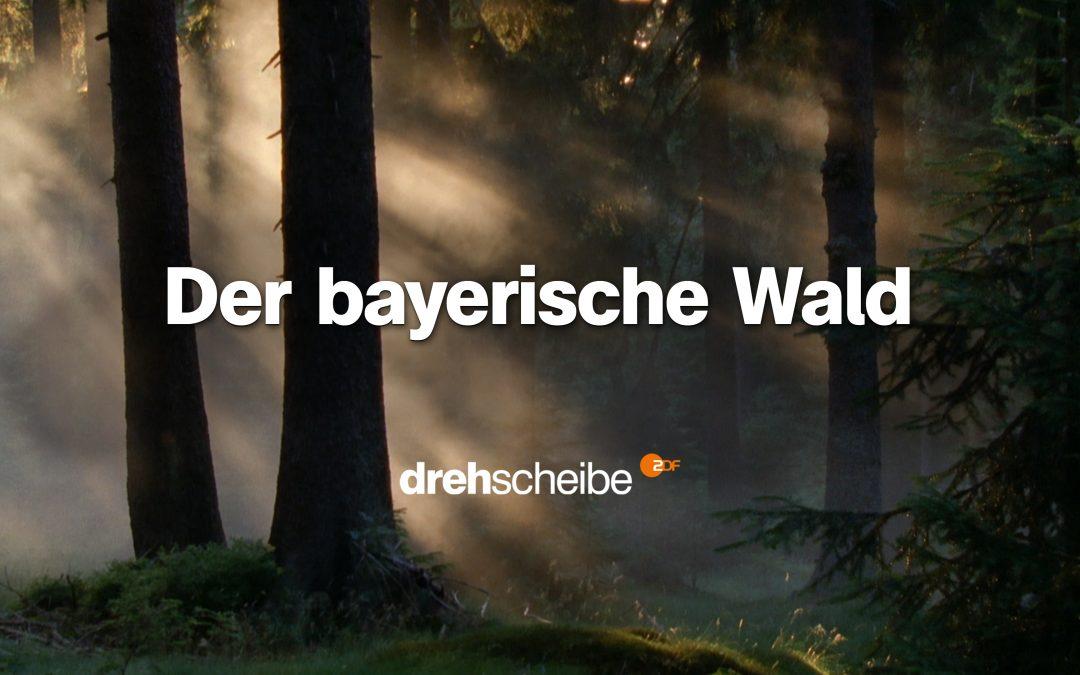 Drehscheibe – Berge, Wildnis, Abenteuer: Unterwegs mit den bayerischen Waldlern
